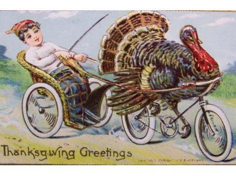 a turkey on a bike, pulling a 2 wheeled carriage